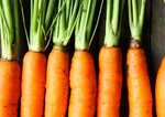 Tips to Recognize Organic Food Companies